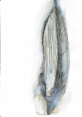 Light as a feather #365LoveNotesToSelf Day 197 ink